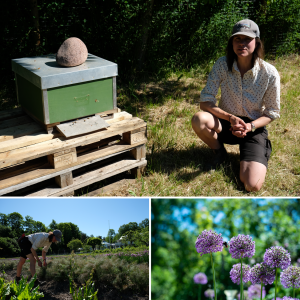 For the love of bees- meet Maria, the gardener at Ulriksdals värdshus